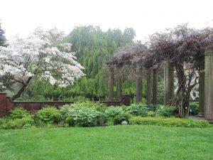Beautiful Glen magan farms garden-2018.JPG